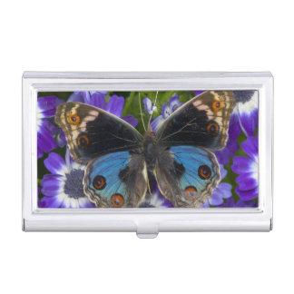 Sammamish Washington Photograph of Butterfly 9 Business Card Holder