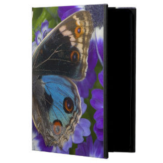 Sammamish Washington Photograph of Butterfly 9 Case For iPad Air