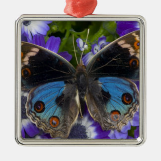 Sammamish Washington Photograph of Butterfly 9 Christmas Ornament
