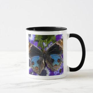Sammamish Washington Photograph of Butterfly 9 Mug