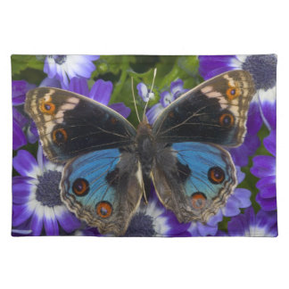 Sammamish Washington Photograph of Butterfly 9 Placemat