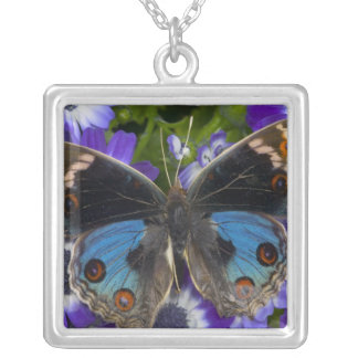 Sammamish Washington Photograph of Butterfly 9 Silver Plated Necklace