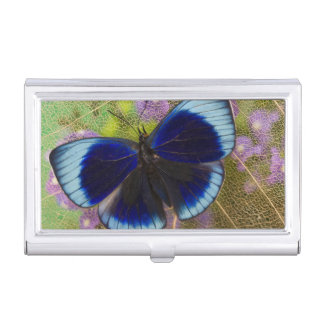 Sammamish Washington Photograph of Butterfly Business Card Holder