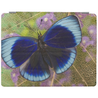 Sammamish Washington Photograph of Butterfly iPad Cover