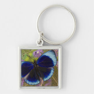Sammamish Washington Photograph of Butterfly Key Ring