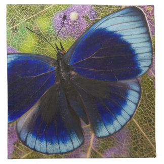 Sammamish Washington Photograph of Butterfly Napkin