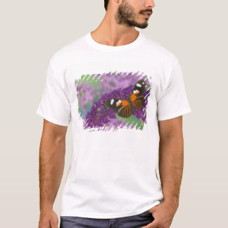 Sammamish Washington Photograph of Butterfly on 10 T-Shirt