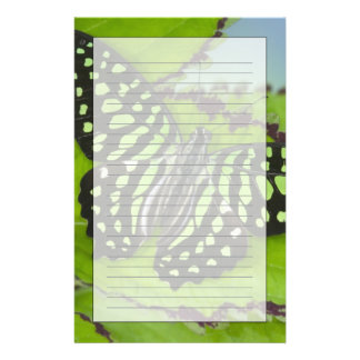 Sammamish Washington Photograph of Butterfly on 11 Stationery Design