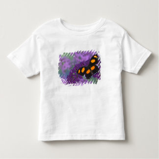 Sammamish Washington Photograph of Butterfly on 13 Toddler T-Shirt
