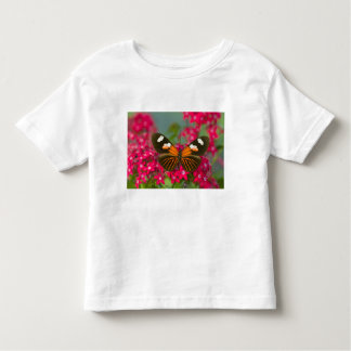 Sammamish Washington Photograph of Butterfly on 14 Toddler T-Shirt