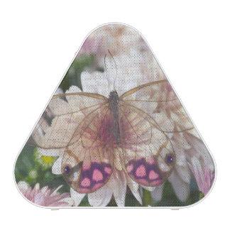 Sammamish Washington Photograph of Butterfly on 15