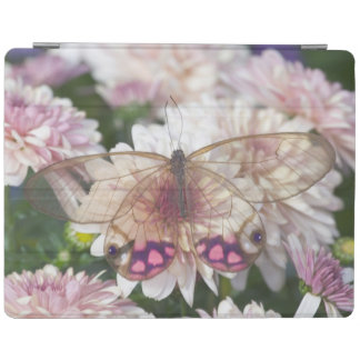 Sammamish Washington Photograph of Butterfly on 15 iPad Cover