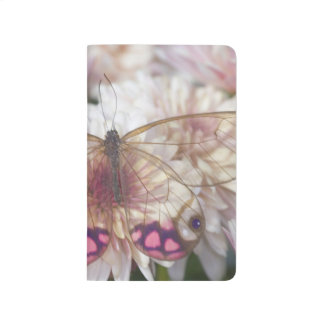 Sammamish Washington Photograph of Butterfly on 15 Journal
