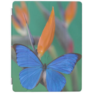 Sammamish Washington Photograph of Butterfly on 2 iPad Cover