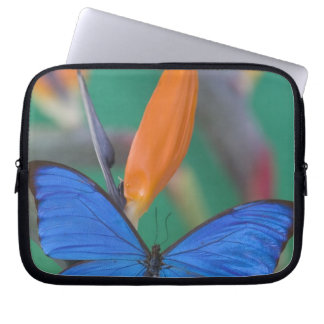 Sammamish Washington Photograph of Butterfly on 2 Laptop Sleeve