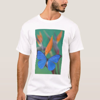 Sammamish Washington Photograph of Butterfly on 2 T-Shirt