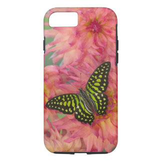Sammamish Washington Photograph of Butterfly on 3 iPhone 8/7 Case