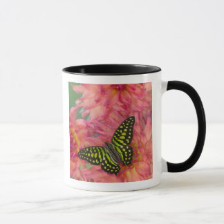 Sammamish Washington Photograph of Butterfly on 3 Mug