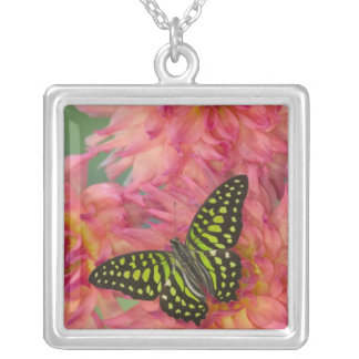 Sammamish Washington Photograph of Butterfly on 3 Silver Plated Necklace