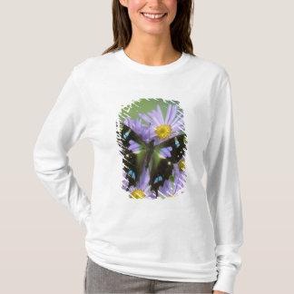 Sammamish Washington Photograph of Butterfly on 4 T-Shirt