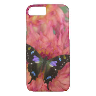 Sammamish Washington Photograph of Butterfly on 5 iPhone 8/7 Case