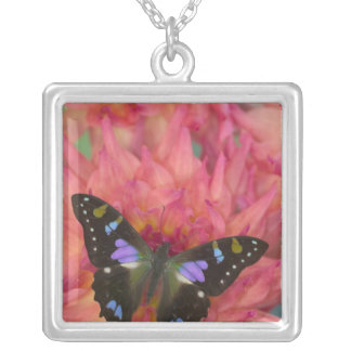 Sammamish Washington Photograph of Butterfly on 5 Silver Plated Necklace