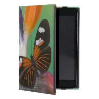Sammamish Washington Photograph of Butterfly on 6 Cover For iPad Mini