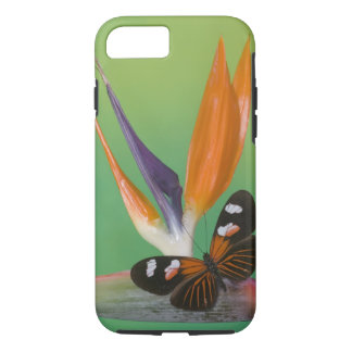 Sammamish Washington Photograph of Butterfly on 6 iPhone 8/7 Case