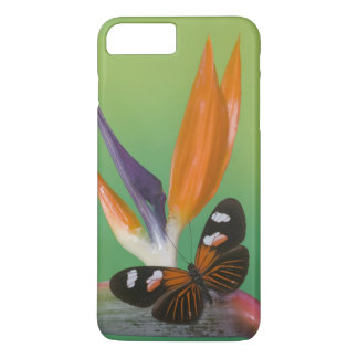 Sammamish Washington Photograph of Butterfly on 6 iPhone 8 Plus/7 Plus Case