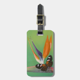 Sammamish Washington Photograph of Butterfly on 6 Luggage Tag