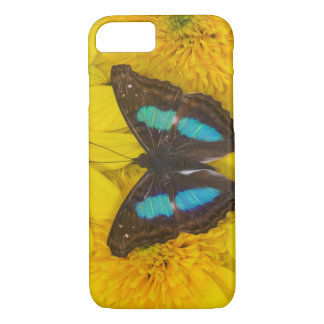 Sammamish Washington Photograph of Butterfly on 7 iPhone 8/7 Case