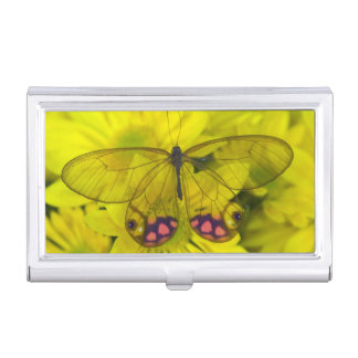 Sammamish Washington Photograph of Butterfly on 8 Business Card Holder