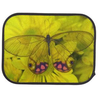 Sammamish Washington Photograph of Butterfly on 8 Car Mat