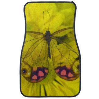 Sammamish Washington Photograph of Butterfly on 8 Floor Mat