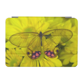 Sammamish Washington Photograph of Butterfly on 8 iPad Mini Cover