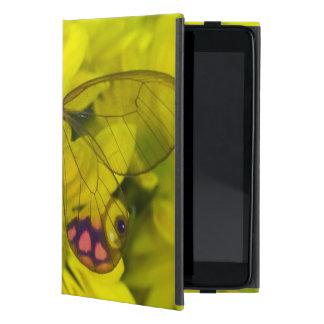 Sammamish Washington Photograph of Butterfly on 8 iPad Mini Cover