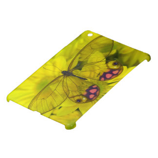Sammamish Washington Photograph of Butterfly on 8 iPad Mini Covers