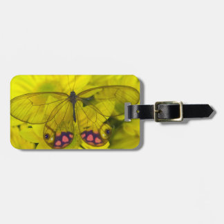 Sammamish Washington Photograph of Butterfly on 8 Luggage Tag