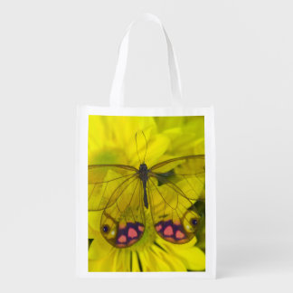Sammamish Washington Photograph of Butterfly on 8 Reusable Grocery Bag