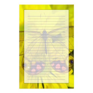 Sammamish Washington Photograph of Butterfly on 8 Stationery