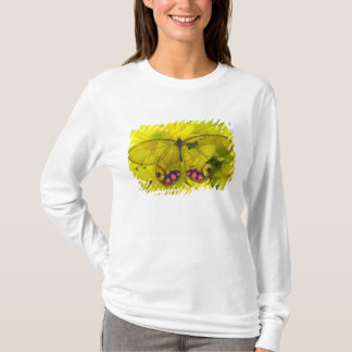 Sammamish Washington Photograph of Butterfly on 8 T-Shirt