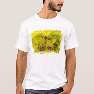 Sammamish Washington Photograph of Butterfly on 8 T-Shirt