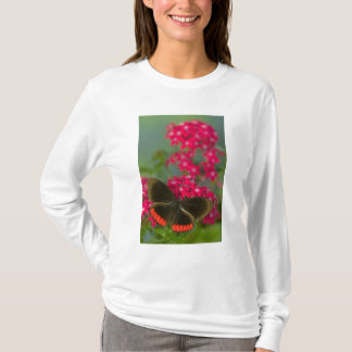 Sammamish Washington Photograph of Butterfly on T-Shirt