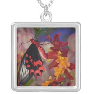 Sammamish, Washington. Tropical Butterflies 12 Silver Plated Necklace