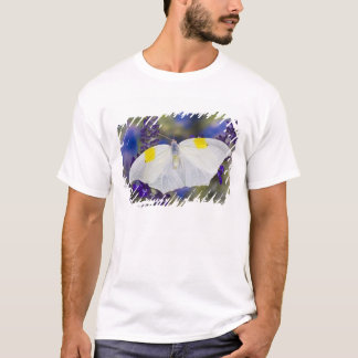 Sammamish, Washington. Tropical Butterflies 13 T-Shirt