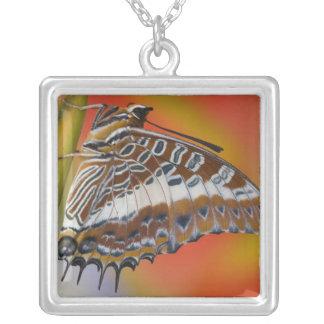 Sammamish, Washington. Tropical Butterflies 15 Square Pendant Necklace