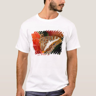 Sammamish, Washington. Tropical Butterflies 17 T-Shirt