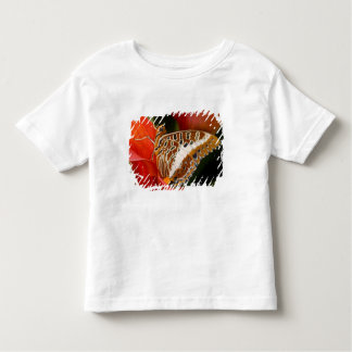 Sammamish, Washington. Tropical Butterflies 17 Toddler T-Shirt