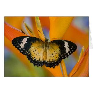 Sammamish, Washington. Tropical Butterflies 18 Card