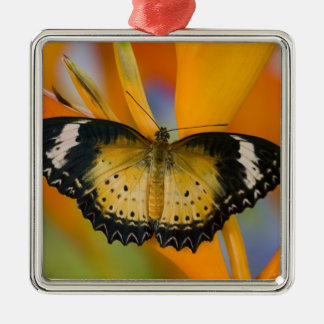 Sammamish, Washington. Tropical Butterflies 18 Christmas Ornament